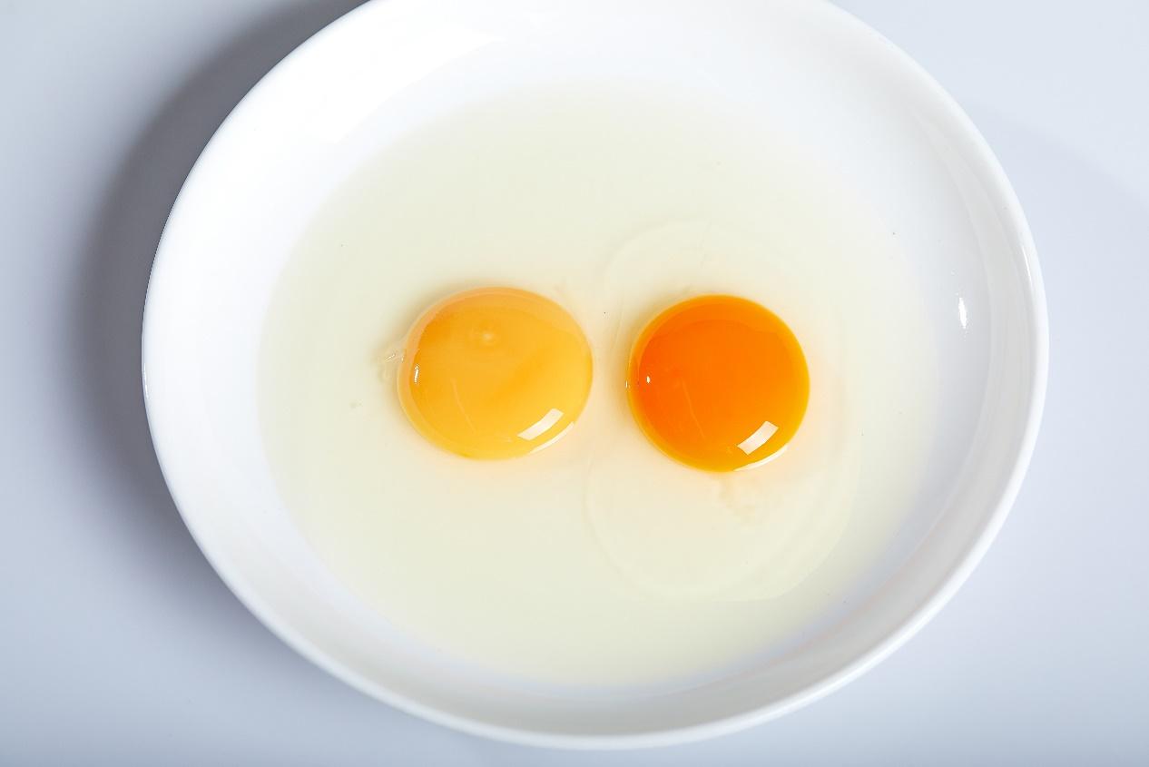 鸡蛋对比.jpg
